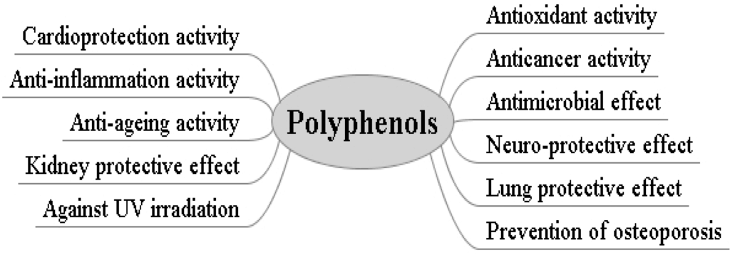 Apple Juice Polyphenols